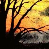 Sunset-160x160
