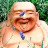laughing-buddha-160x160