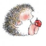 Nobody Hugs a Hedgehog